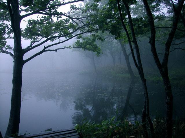 photo060619